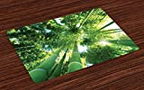 Lunarable Bamboo Print Place Mats Set of 4, Low Angle View of Tree Tops Asian Zen Tranquil Lands Jungle Meditation Spa Theme, Washable Fabric Placemats for Dining Room Kitchen Table Decoration, Green