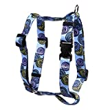 Yellow Dog Design Spirals Blue Roman Style H Dog Harness-Large-1'' and fits Chest Circumference of 20 to 28''