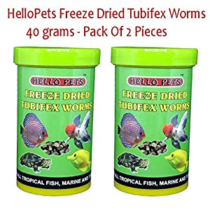 HelloPets Freeze Dried Tubifex Worms FishFood (40 GMS – Pack of 2 Pieces)