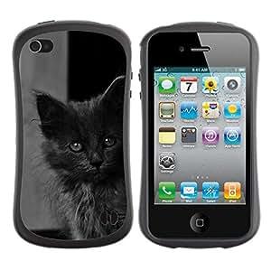 "Pulsar iFace Series Tpu silicona Carcasa Funda Case para Apple iPhone 4 / iPhone 4S , Lindo gatito bebé gato gris peludo Bestia"""