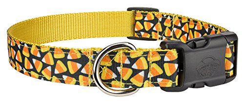 Country Brook DesignDeluxe Candy Corn Ribbon Dog Collar - Medium