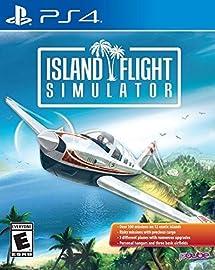 2303cbf4cd110 Island Flight Simulator - PlayStation 4: Video Games - Amazon.com