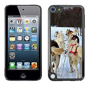 Cas Coq Case Cover // M00106148 Huskies de trineo Perros Siberian Huskies // Apple ipod Touch 5 5G 5th