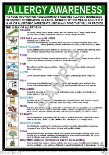 FOOD ALLLERGY AWARENESS A4 LAMINATED POSTER