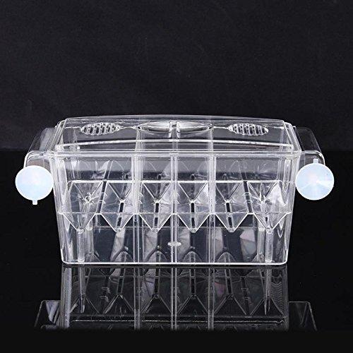 4 Grides Breeding Incubator Isolation Box Fish Tank Aquarium Hatching Transparent Boxes Multifunctional Acrylic Fish Tank Holder by LEO_Pet supplies (Image #7)