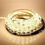 LEDMO Flexible LED Strip Lights, DC12V LED Light Strips,300 Uints SMD2835 LEDs,Non-Waterproof,Warm White 2800K,16.4Ft/5M