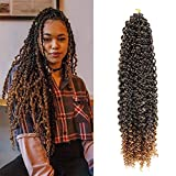 Passion Twist Hair 18 Inch 6 Packs Ombre Brown Water Wave Crochet Braids for Passion Twist Crochet Hair Passion Twist Braiding Hair Extensions(T30,crochet needle+colorful beads)