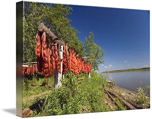 Imagekind Wall Art Print entitled Red Salmon Hang On Drying