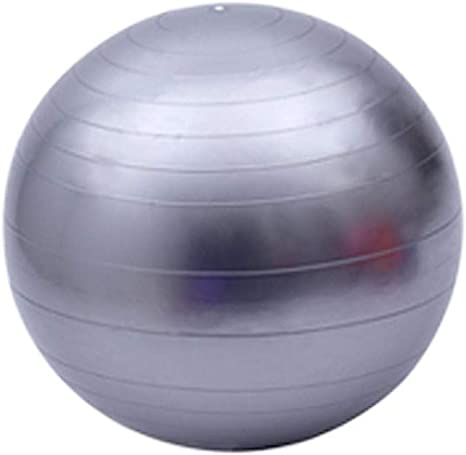 Pelota de Ejercicios Suiza Incluye Bomba Bola 65CM, Balón de ...