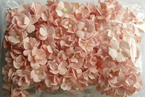 Paper Flower Stickers (SOFT PINK 100 Mulberry paper 2 layer Flower Wedding Scrapbooking 2)