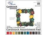 Accent Design Paper Accents ADP1212.1091 12x12 Earth Tone Cardstock Pad