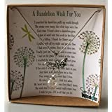Smiling Wisdom - A Dandelion Wish For You Story Gift...