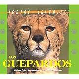 Gatos Salvajes Del Mundo (Wild Cats of the World) - Los Gurpardos (The