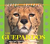 El Gurpardo, Matt Cole and Leeson, 1410300048