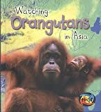 Watching Orangutans in Asia, Deborah Underwood, 1403472319