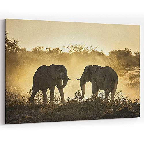 Actorstion Two Elephants Having a Battle with Grass in Background Canvas Prints Wall Art,069950 36