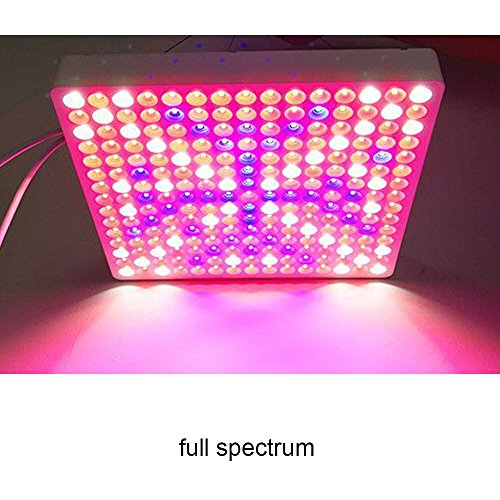 Cost Of Led Grow Lights in US - 5