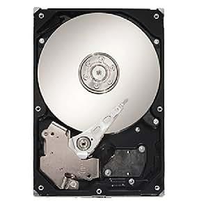 Dell Seagate CP464 ST31000640SS - Disco duro interno de 1 TB (7200 ppp, conector SAS)