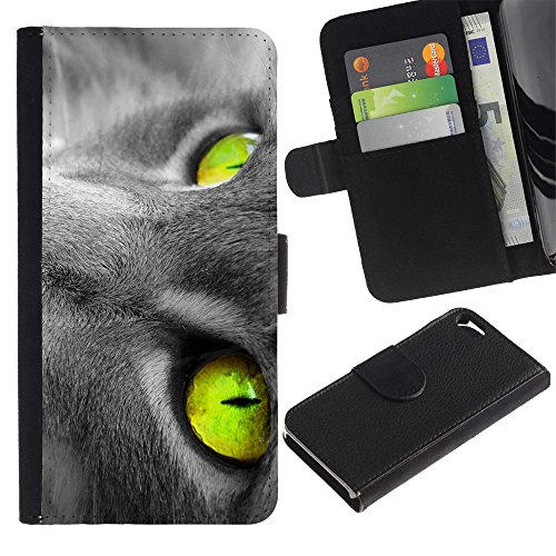 Be Good Phone Accessory // Caso del tirón Billetera de Cuero Titular de la tarjeta Carcasa Funda de Protección para Apple Iphone 5 / 5S // Vibrant Green Grey Cat Russian Blue