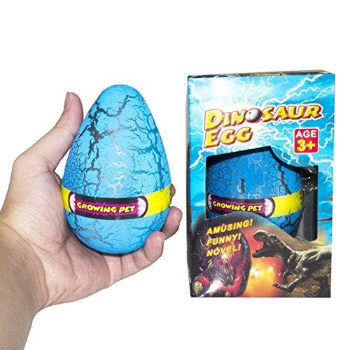 blue egg - 7