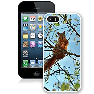 Squirrel Tree Animal Spring Branch (2) Durable High Quality iPhone 5S Phone Case