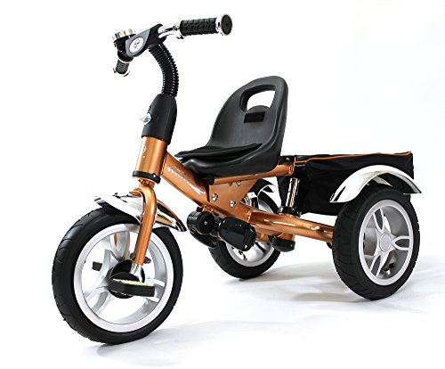 4in1 Lexx Trike VIP Smart Kidu0027s Tricycle 3 Wheel Bike Removable Handle u0026 Canopy ...  sc 1 st  Lifestyle Updated & 4in1 Lexx Trike VIP Smart Kidu0027s Tricycle 3 Wheel Bike Removable ...