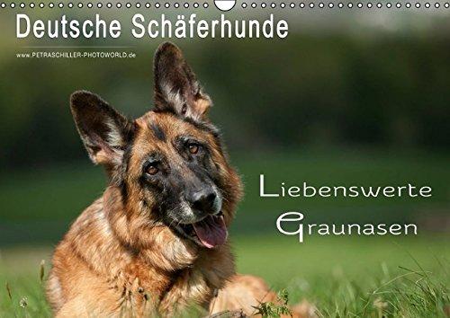 Deutsche Schäferhunde -  Liebenswerte Graunasen (Wandkalender 2016 DIN A3 quer): Schäferhunde - auch sie werden älter .... (Monatskalender, 14 Seiten) (CALVENDO Tiere)