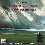 Ein Schuss in den Nebel - Die Pest von Bergamo | Jens Peter Jacobsen