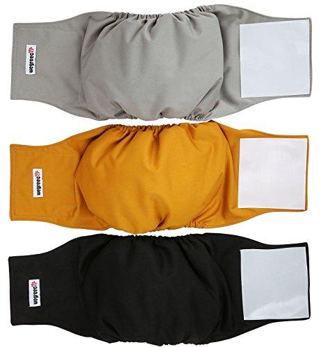 Wegreeco Washable Male Belly Wrap product image
