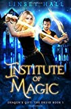 Institute of Magic: Volume 1 (Dragon's Gift: The Valkyrie)