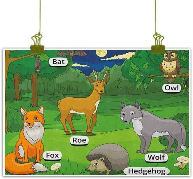 QIAOQIAOLO - Diagrama Educativo para Colgar en el salón con ...