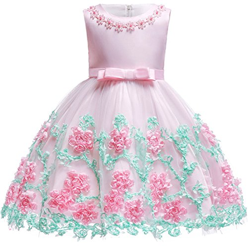 Baby Girls Dress 12 M Blush-Pink Summer Wedding Special Occasion Dresses for Little Kids Knee Length Floral Bridesmaid Dresses for Toddlers Lace A-Line Father Daughter Dance Dresses Cute (Pink 12M)
