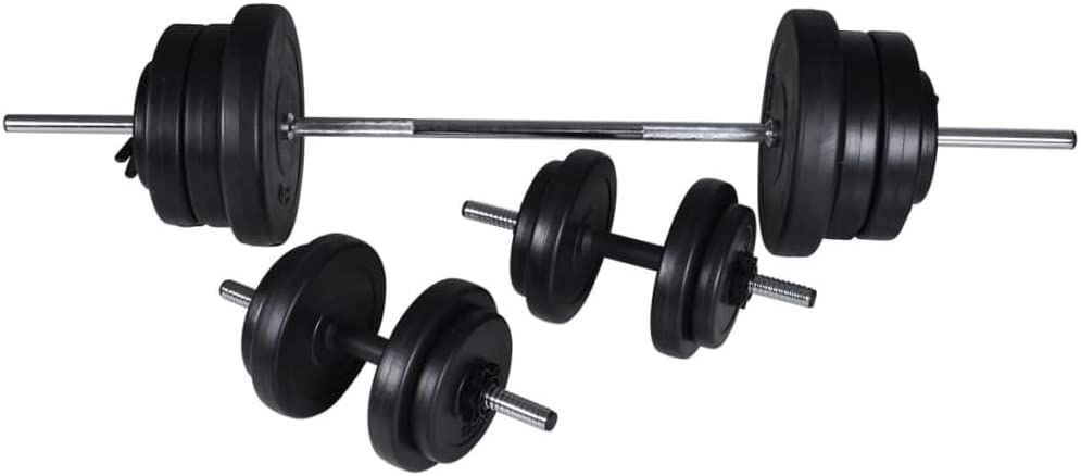 vidaXL 2x Weight Plates 20kg Cast Iron Fitness Gym for Dumbbell Lifting Bars