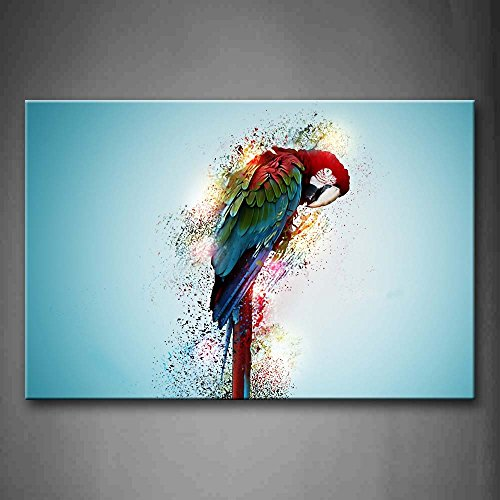 First Wall Art - Blue And Red Macaw Lick Feather Wall Art Pa