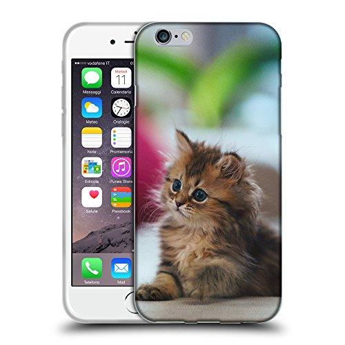 """Just Phone Cases Coque de Protection TPU Silicone Case pour // V00004272 chaton aux yeux bleus pelucheux mignon // Apple iPhone 6 6S 6G PLUS 5.5"""""""