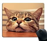 Smooffly Gaming Mouse Pad Custom,Curious Cute Cat Look at you with Eager Eyes on Table Customized Rectangle Non-Slip Rubber Mousepad Gaming Mouse Pad