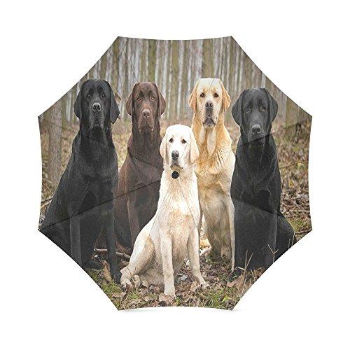 Lab Umbrella - Custom Cute Labrador Dog Compact Travel Windproof Rainproof Foldable Umbrella