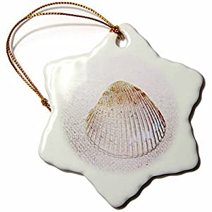 51DO4QPGb-L._SS300_ 100+ Best Seashell Christmas Ornaments