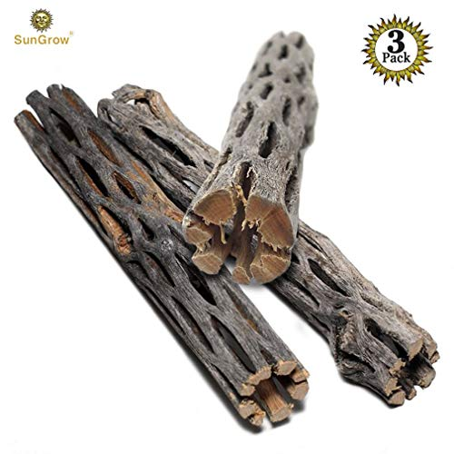 SunGrow Natural Cholla Wood - 3 Pieces, 5 inches Long - Aquarium Decoration & Chew Toys for small pets - Artistic Home-Decor - 100% Natural & pet safe - Fertilizer Free - Long Lasting Driftwood by SunGrow