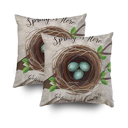 Pamime Square Throw Realistic Nest Blue Speckled Eggs Message Arrival Spring Easter Top View Pillow Case Cover Decorative Cushion for Home 18x18Inch 2 Pack Art Pillowcase ()