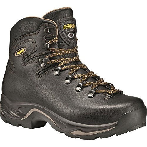 Lightweight Backpacking Boots - Asolo TPS 535 LTH V Evo Backpacking Boot - Men's Brown, 14.0