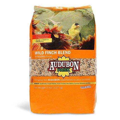 Pine Nuts Bird Food - Aududon Park 12229 Wild Finch Blend Wild Bird Food, 5-Pounds