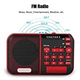 fosa Digital FM Radio, Noise Cancelling Portable 20Hz-20KHz Bluetooth Radio Speaker MP3 Music Player Support U Disk/TF Card, 6-8 Hours Play for Bedroom,Outdoor