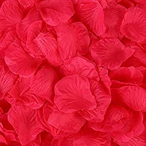 Ttmarket 1000 Pcs Artificial Silk Flower Pedals Rose Pedals Flower Girl Pedals for Wedding Aisle Romantic Night Party (Red) 98