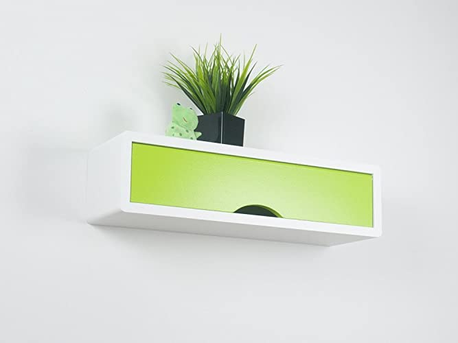 Floating Contemporary Shelf With Colorful Door, Slim Wall Cabinet, Wall  Decor Box