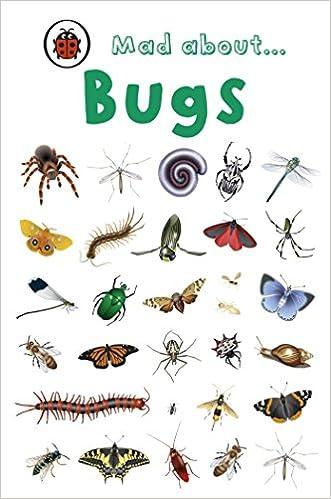 mad about bugs rains brothers amazon co uk ladybird