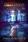 Destined Magic: A Witch Guardian Romance
