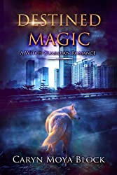 Destined Magic: A Witch Guardian Romance (English Edition)
