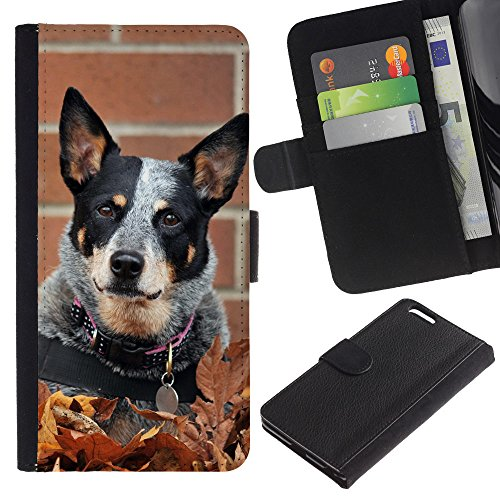 OMEGA Case / Apple Iphone 6 PLUS 5.5 / rat terrier toy fox small dog autumn fall / Cuir PU Portefeuille Coverture Shell Armure Coque Coq Cas Etui Housse Case Cover Wallet Credit Card