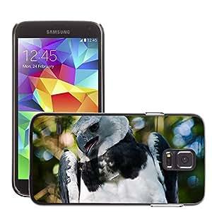 Etui Housse Coque de Protection Cover Rigide pour // M00109870 Harpia Águila Brasil Ojos Pájaro Mosca // Samsung Galaxy S5 S V SV i9600 (Not Fits S5 ACTIVE)